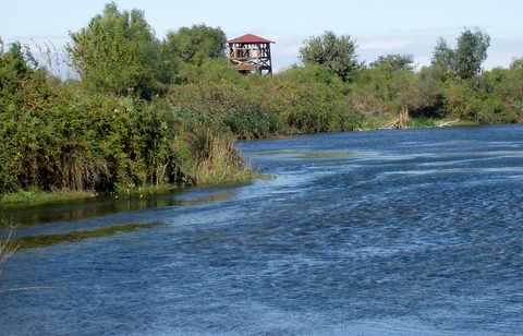 Γαλλικός ποταμός δέλτα